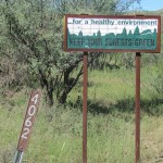 Forest Service Sign in Coronado National Forest