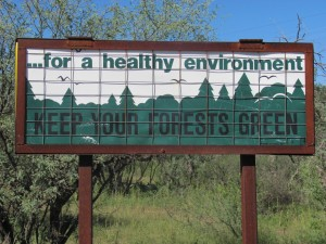 SIgn near Rosemont site in the Coronado National Forest